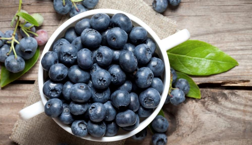 article-la-ciencia-de-los-alimentos-57e3cabf2aa81